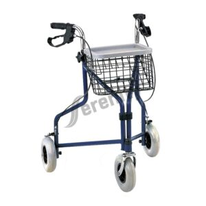 Walking AID Rollator FS969H